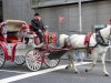 Horse and carriage, Central Park