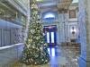 Christmas Tree at the Plaza