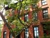 Case nel West Village